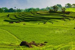 Tour du lịch Pù Luông